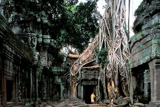 Temple Ta Prohm, Angkor Thom