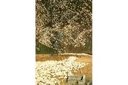 Mustering sheep, Garvie Mountains
