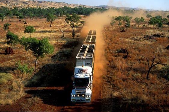 Cattle truck, Kimberley