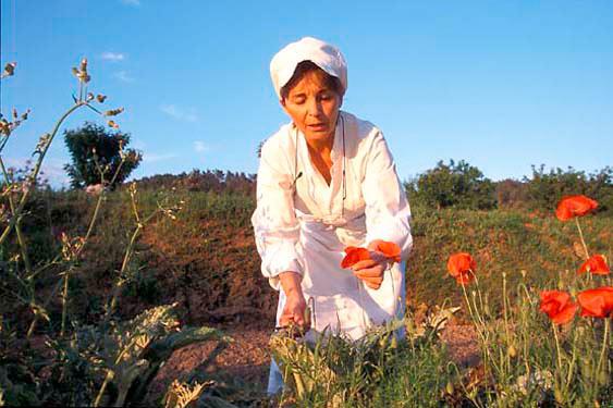 Herb garden, Reine Sammut, Lourmarin