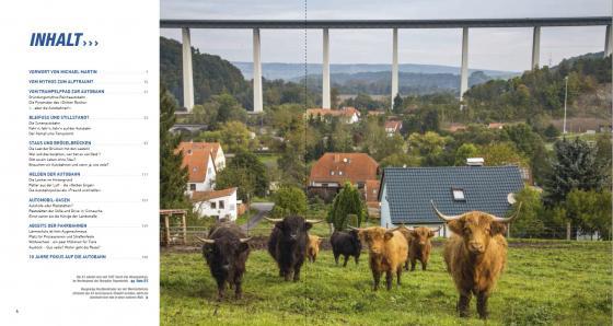 Neugierige Hochlandrinder vor der Werratalbrücke bei Eisenach