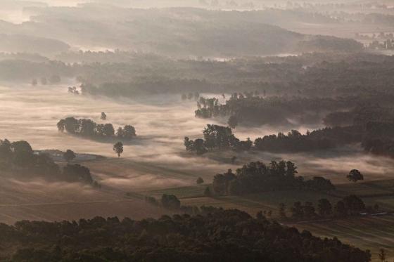 Landscape in fog near Lüneburg
