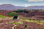 Ryvoan Bothy, Cairngorms